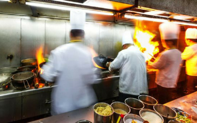The Life of a Line Cook: Traits for Success